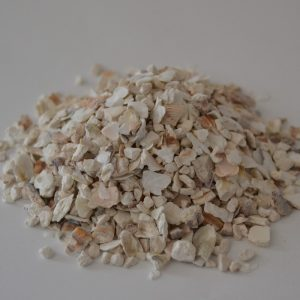 Conchilla de ostra 20 Kg