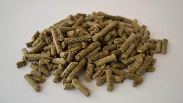 Alfalfa granulada 35 Kg